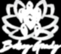 Betsey Grady, Rosie Bluum, Turtle, Lotus, Akashic Reading, Meditation Program, Liquid Mind