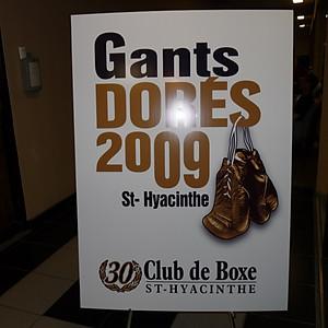 Championnat des Gants Dorés 2009