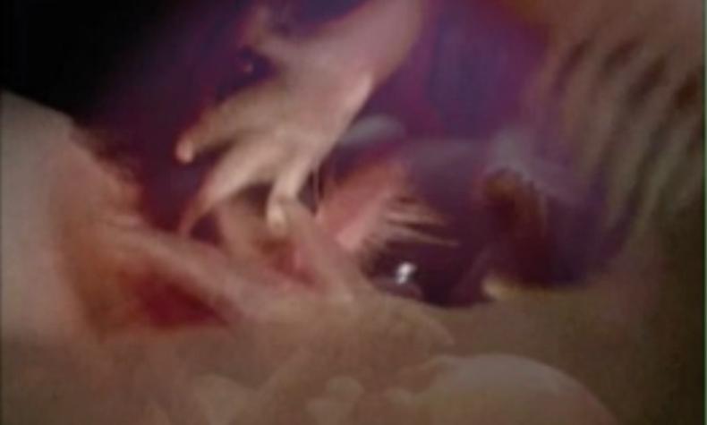 Pixie Dust - Gina Czarnecki