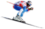 swiss top events, white turf, fis ski wengen
