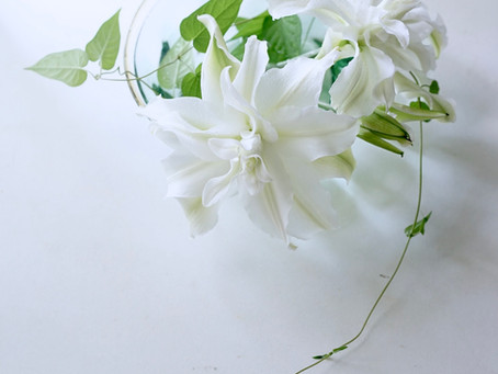 シンプルな花暮らし vol.17  Modern Lily