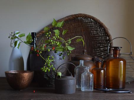シンプルな花暮らし vol.33 『植物と古道具』イベント予告編