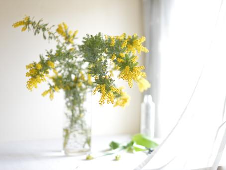 シンプルな花暮らし  vol.1 春の黄色い花木