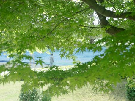 日々是花日 vol.8 薫風