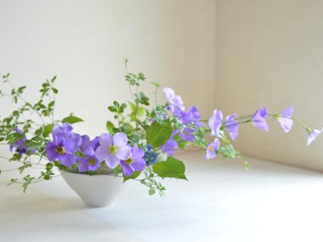 シンプルな花暮らし vol.22 クラシックな夏の花