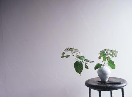 シンプルな花暮らし vol.20 梅雨明け間近。