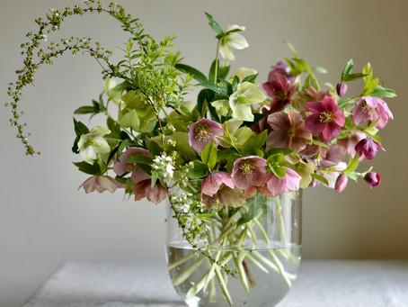 シンプルな花暮らし vol.5 晩春の花