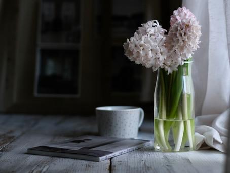 シンプルな花と暮らし vol.44 一月の花