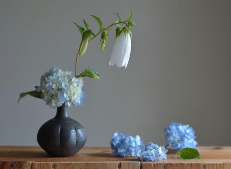 シンプルな花暮らし vol.14 しっとりと紫陽花