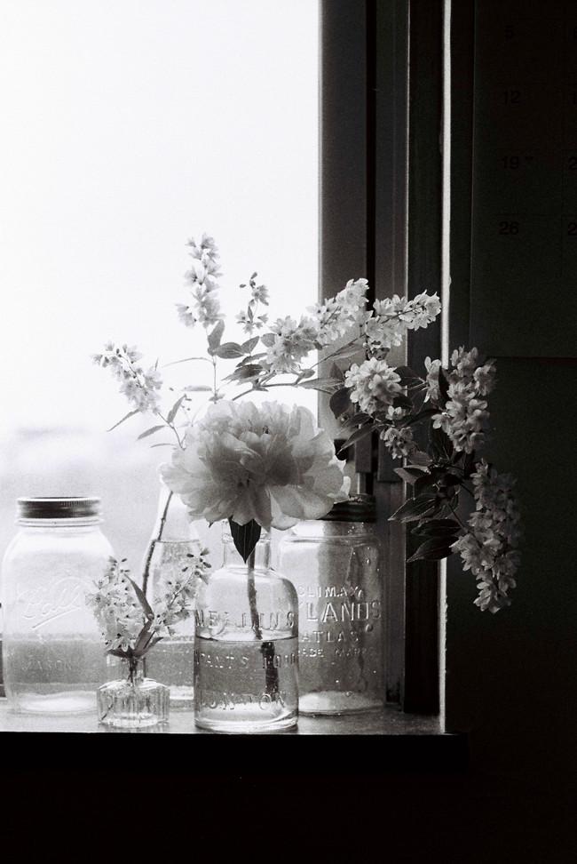 seasonal window