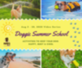 Doggie Summer School.png