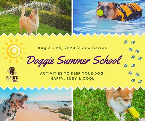 Doggie Summer School.png