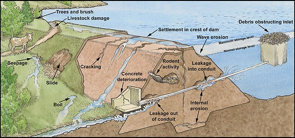 Earthen Dam Issues.jpg