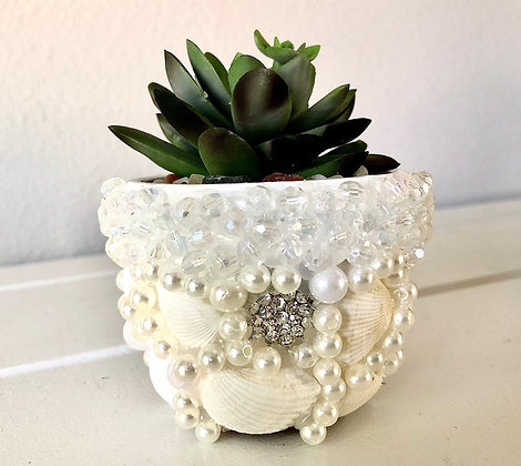 "3"" Clay Pot with Decorative Succulent"