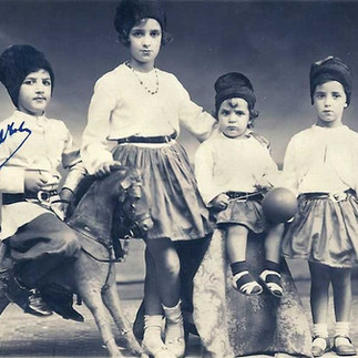 família Vianna