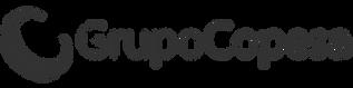04-COPESA.png