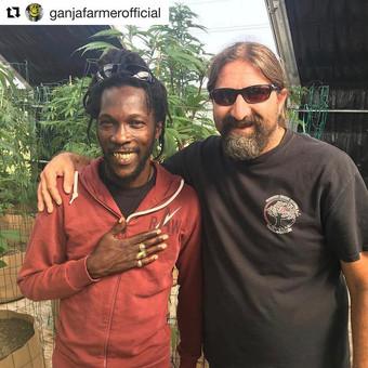 """Reggae singer Marlon """"Ganja Farmer"""" Asher"""