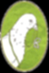 Craft Pigeon Logo – Handgewebte Öko-Accessoires