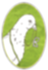 Craft Pigeon Logo - Handgewebte Accessoires
