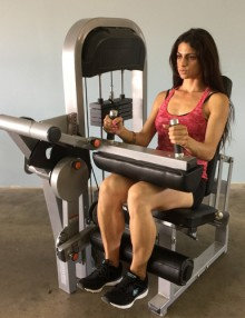 Pro-fit seated leg curl machine (new)