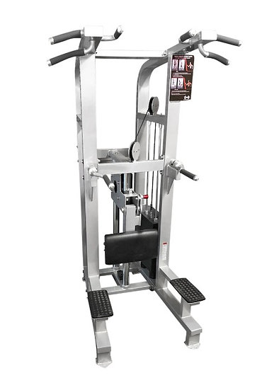 Pro-fit assisted chin/dip machine (new)