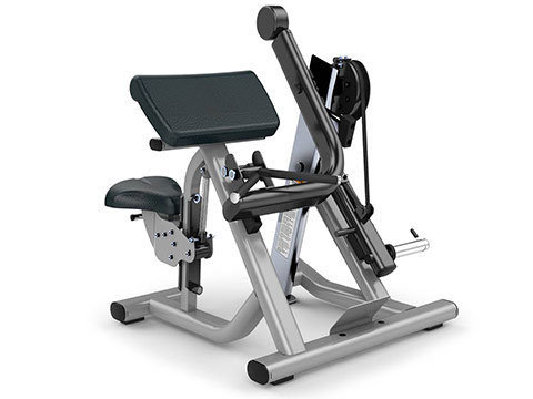 Signature plate loaded bicep curl (new)