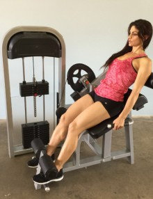 Pro-fit back extension machine (new)