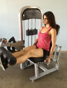 Pro-fit seated leg extension (new)