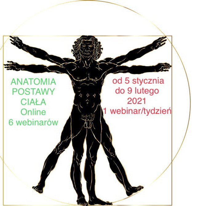 Anatomia Postawy Ciała online
