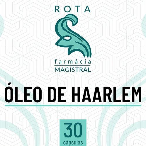 ÓLEO DE HAARLEM