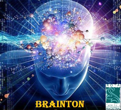 BRAINTON