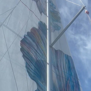 video voile 2.mp4