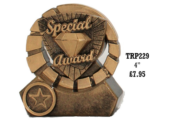 TRP229 Special Award.jpg
