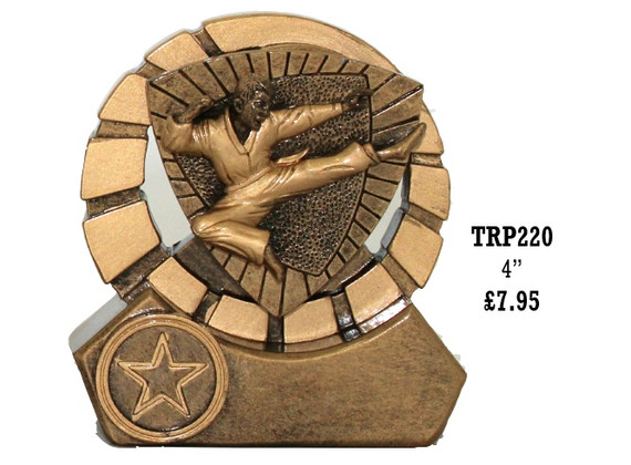 TRP220 Martial Arts.jpg