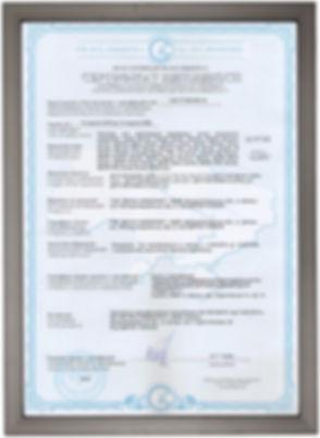 рамка с сертификатом 2.jpg