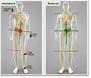 Tight muscles cause structural changes that affect the entire body