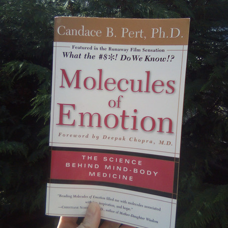 Book Review: Molecules of Emotion