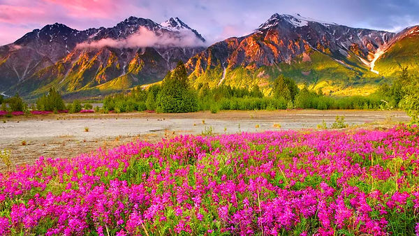 Beautiful-Scenery-Wallpapers10.jpg