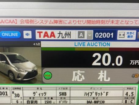TAA & CAA AUCTIONS ERROR TODAY (AKEBONO)