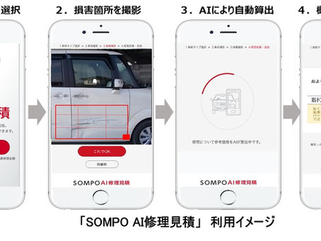 SOMPO AI REPAIRING QUOTATION