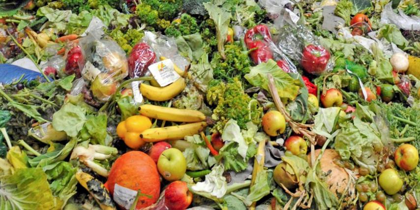 Desperdicios de alimentos - Nutricionista Vegetariana Karina Herrera