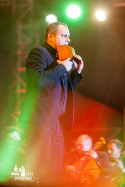 Flavius Tinică in Concert