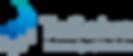 TeSolva_Logo_Datenanalyse.png