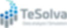 TeSolva_Logo_Datenanalyse_engl.png