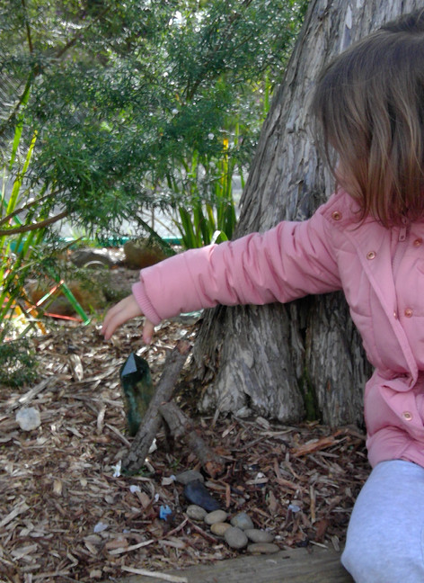 Creating homes for wildlife during remote learning