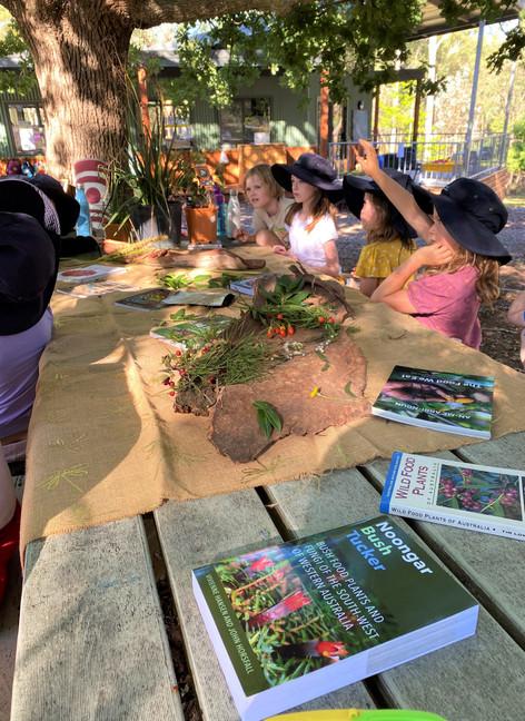 Learning about bush tucker