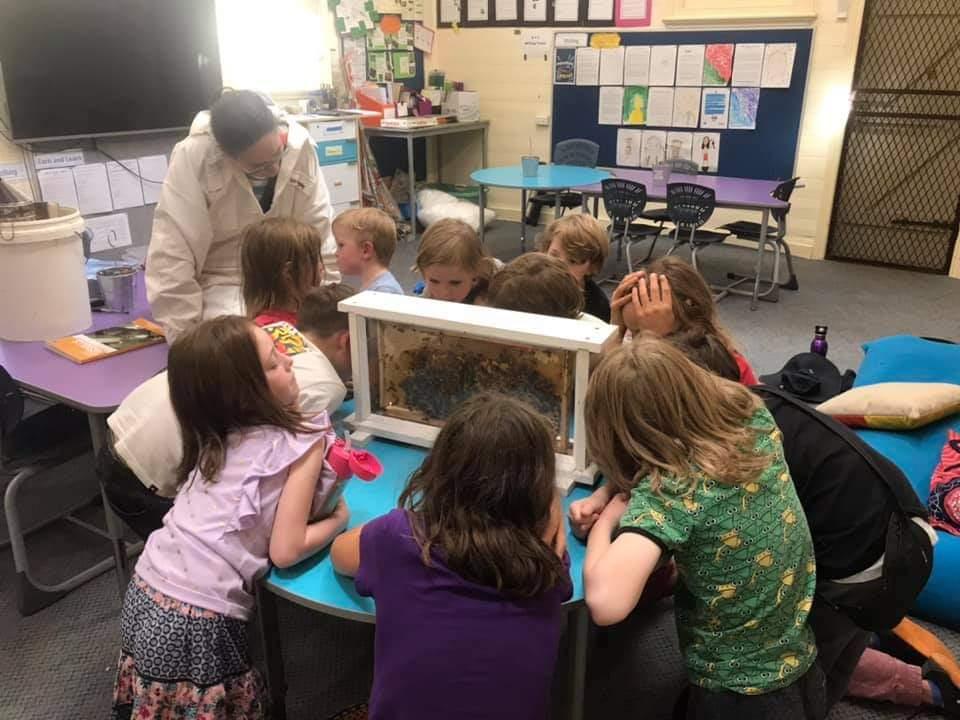Beekeeping in Learning Adventures