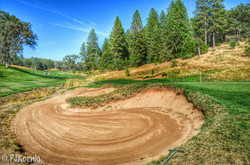 Darkhorse Golf Course | Auburn