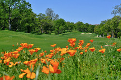 Catta Verdera Golf Club | Lincoln
