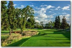 Del Paso Country Club | Sacramento